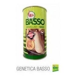 Zapallo 538 Basso por 4000...