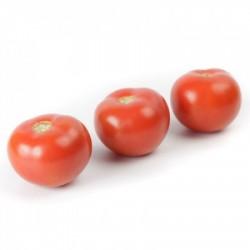 Tomate ALAMINA Redondo...