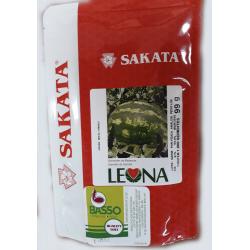 Sandia LEONA Sakata x 1000...